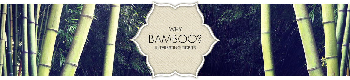 why bamboo header