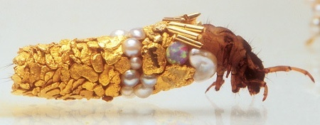 Fashion Bug: Caddisfly larvae jewelry