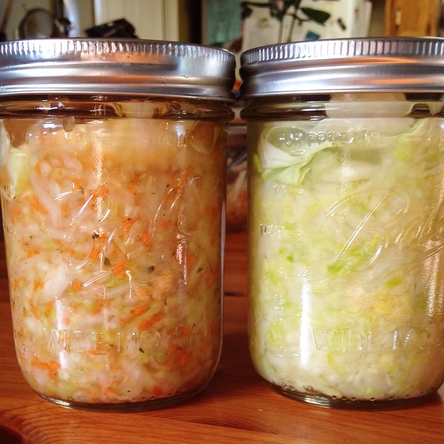 Fermentation Explanation: The Science of Sauerkraut