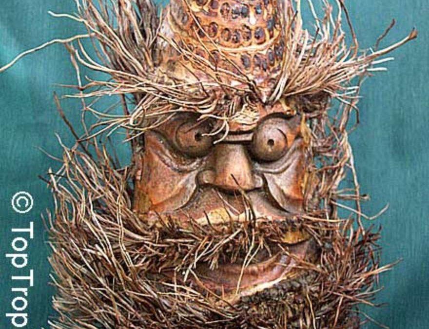 Holy faces for sacred spaces: Ban jhankri masks from bamboo