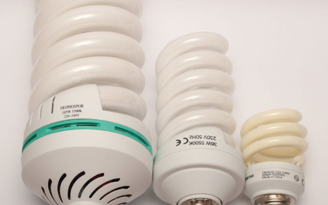 Unenlightened: Some conservatives more likely to shun light bulbs with pro-environment messages