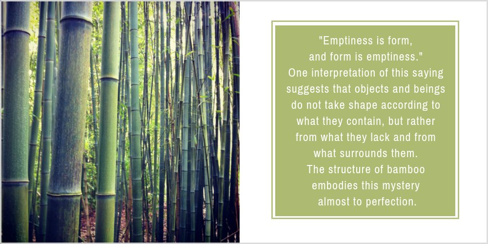 Bamboo Mysteries
