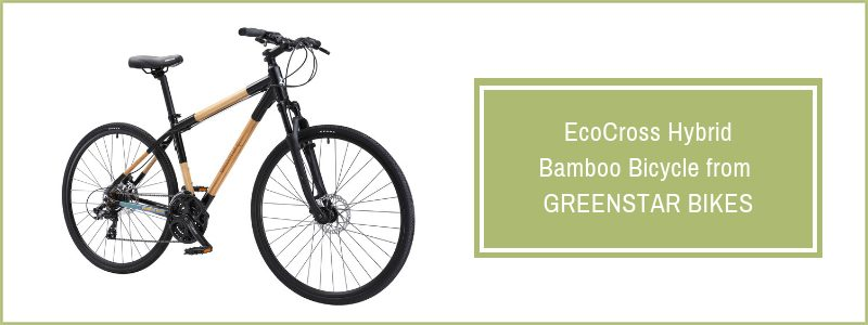 EcoCross Hybrid Bamboo Bicycle from Greenstar