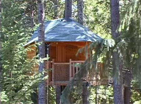 Ewok Village Tree House