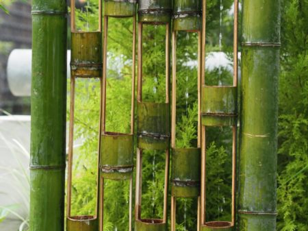 Hollow bamboo