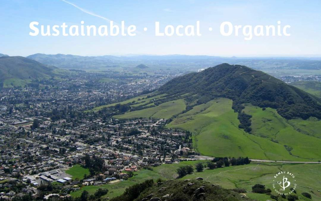Best green stores in San Luis Obispo