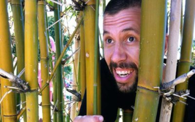 9 Things you didn't know you could do with bamboo