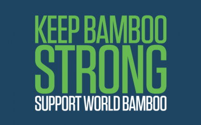 World Bamboo Foundation sponsors bamboo pioneers