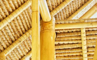 Learning to build with bamboo: Bamboo U