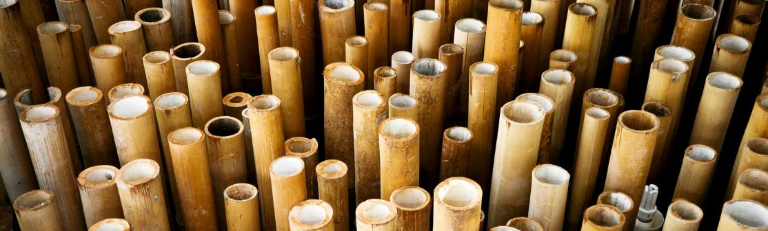 Bamboo poles and canes banner